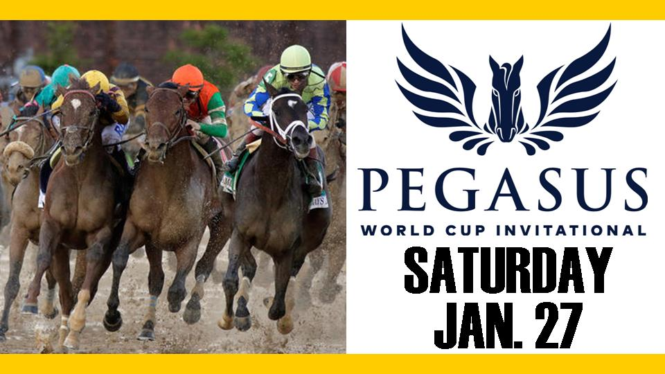 2018 Pegasus World Cup TV.jpg